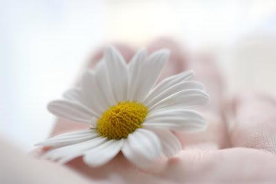 สมาธิที่มีจิตตั้งมั่น ต่างกับสมาธิที่มีจิตสงบในอารมณ์อันเดียว